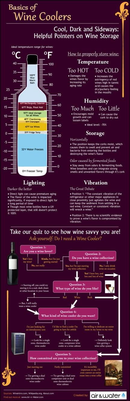 the-basics-of-wine-coolers-storage